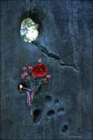 Lenino, Polski cmentarz wojenny