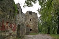Trembowla, Zamek