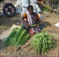 6. (Bengaluru) Bangalore, leniwa niedziela, City Market