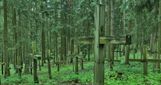 Курапа́ты , Курапаты, Kuropaty, Kurapaty, Minsk Belarus, Mińsk Białoruś, mass graves of Belarusians and Poles murdered by Soviet secret police NKVD