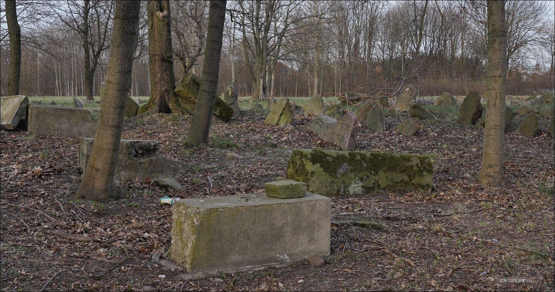 Siedlce, ul. Szkolna 29, Cmentarz żydowski w Siedlcach